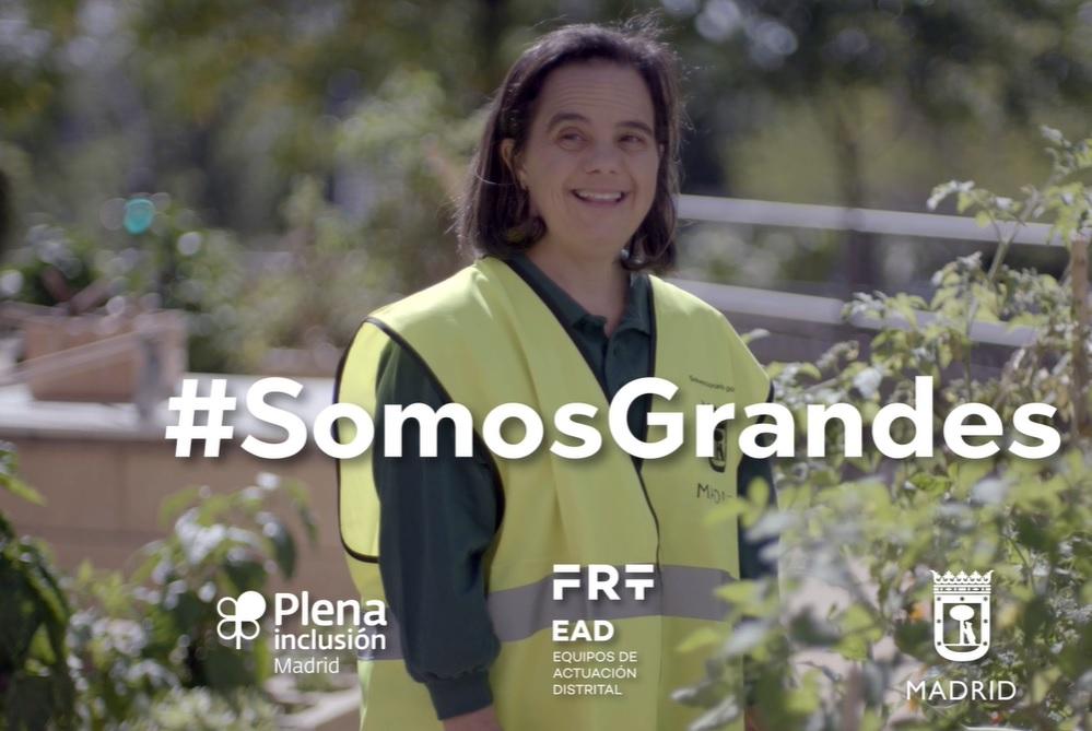 #SomosGrandes_Plena Inclusión, spots